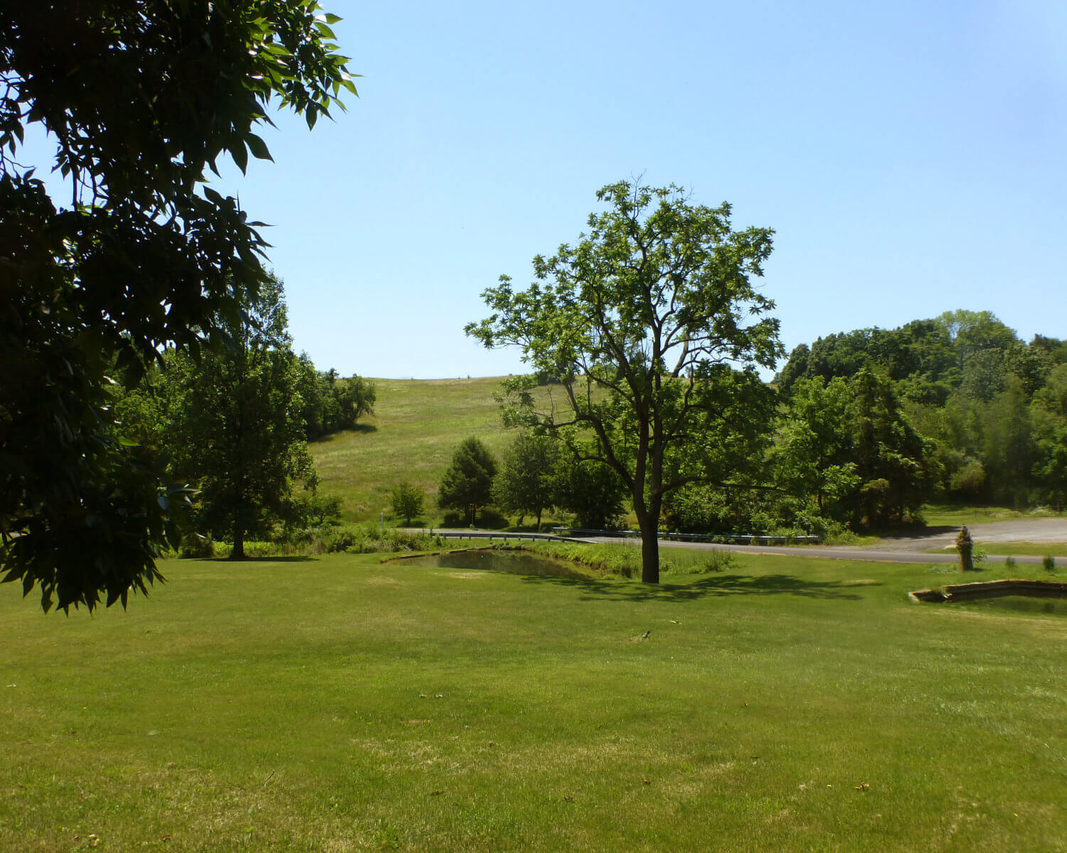 Over 33 Acres of Bucolic Rolling Hills