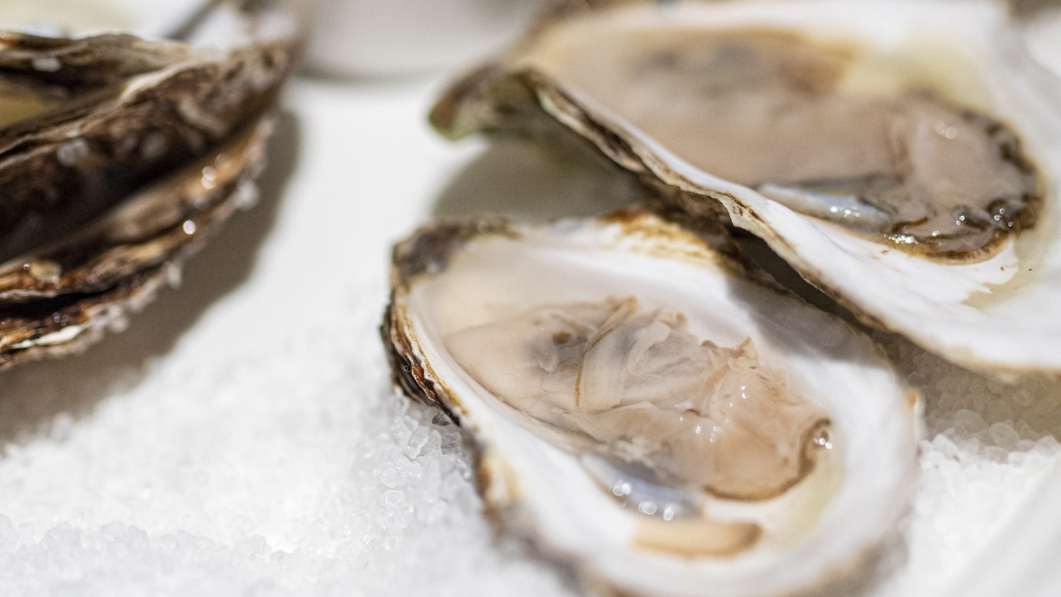 Sweetgrass Oysters - White Balsamic Mignonette